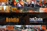 Boletín N°06/2020 FESPROSA